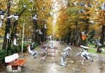 پارک شهر رشت - باغ محتشم رشت - پارک قدس رشت - پارک های رشت - مکان های تفریحی رشت