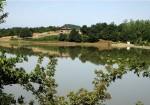 سد خاکی سقالکسار رشت - روستای سقالکسار - سقالکسار گیلان - آدرس سقالکسار