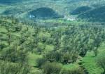 پارک جنگلی شورآب خرم آباد