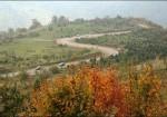 جنگل توسکستان گرگان